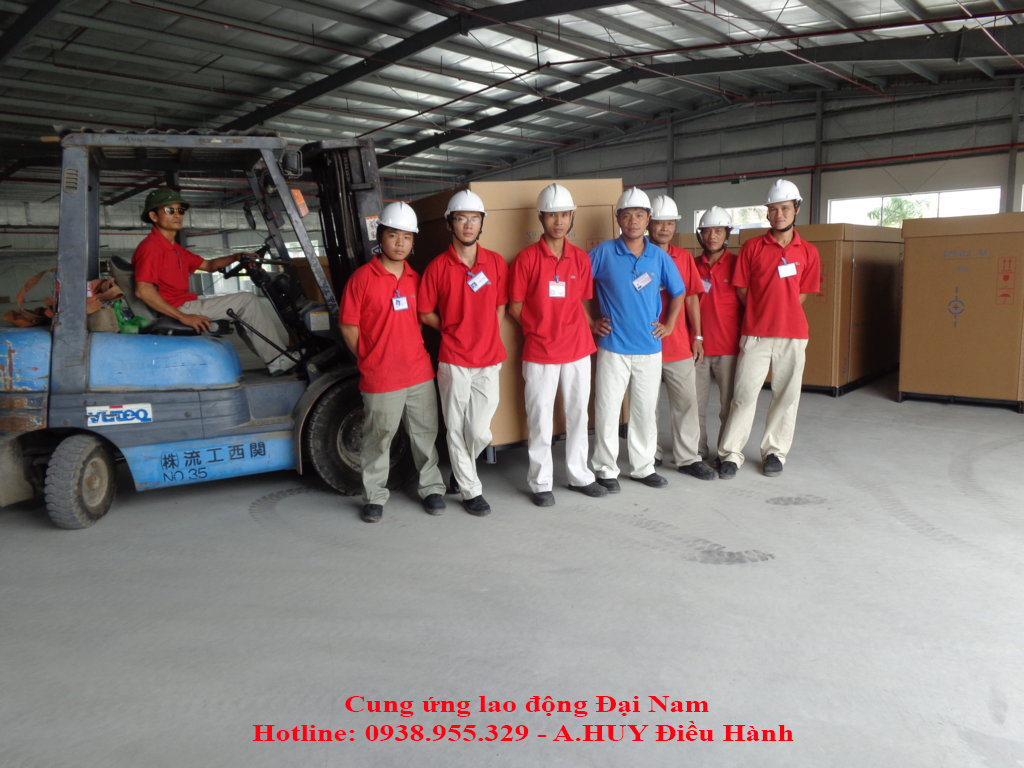 cung ung lao dong boc